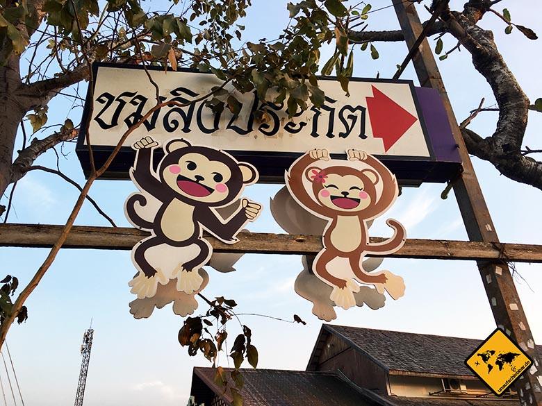 Pattaya Floating Market Affenshow