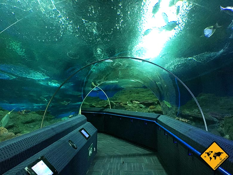 Pattaya Underwater World Tunnel