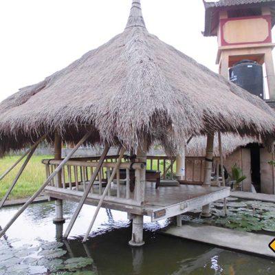Pavillion im Karsa Kafe Ubud
