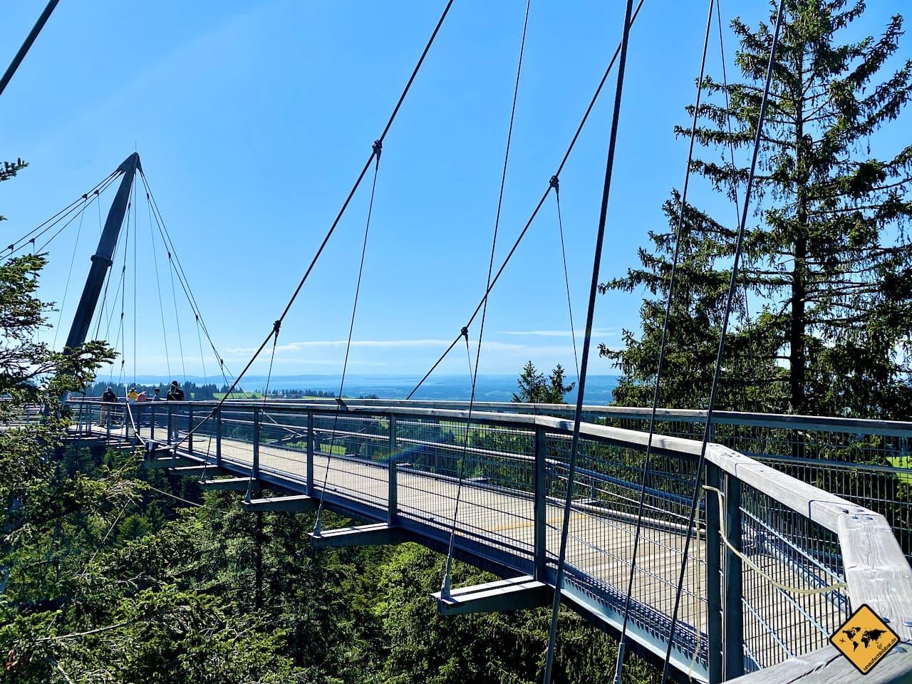 Perspektive Skywalk Allgäu Hängebrücke