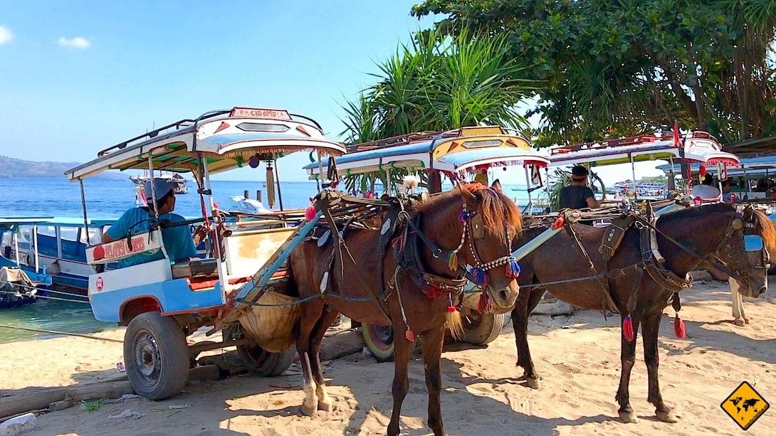 Pferdekutschen Gili Inseln