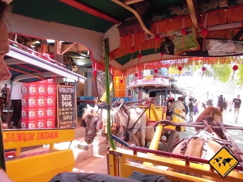 Pferdekutschen Trawangan