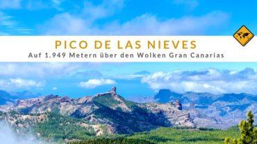Pico de las Nieves – auf 1.949 Metern über den Wolken Gran Canarias