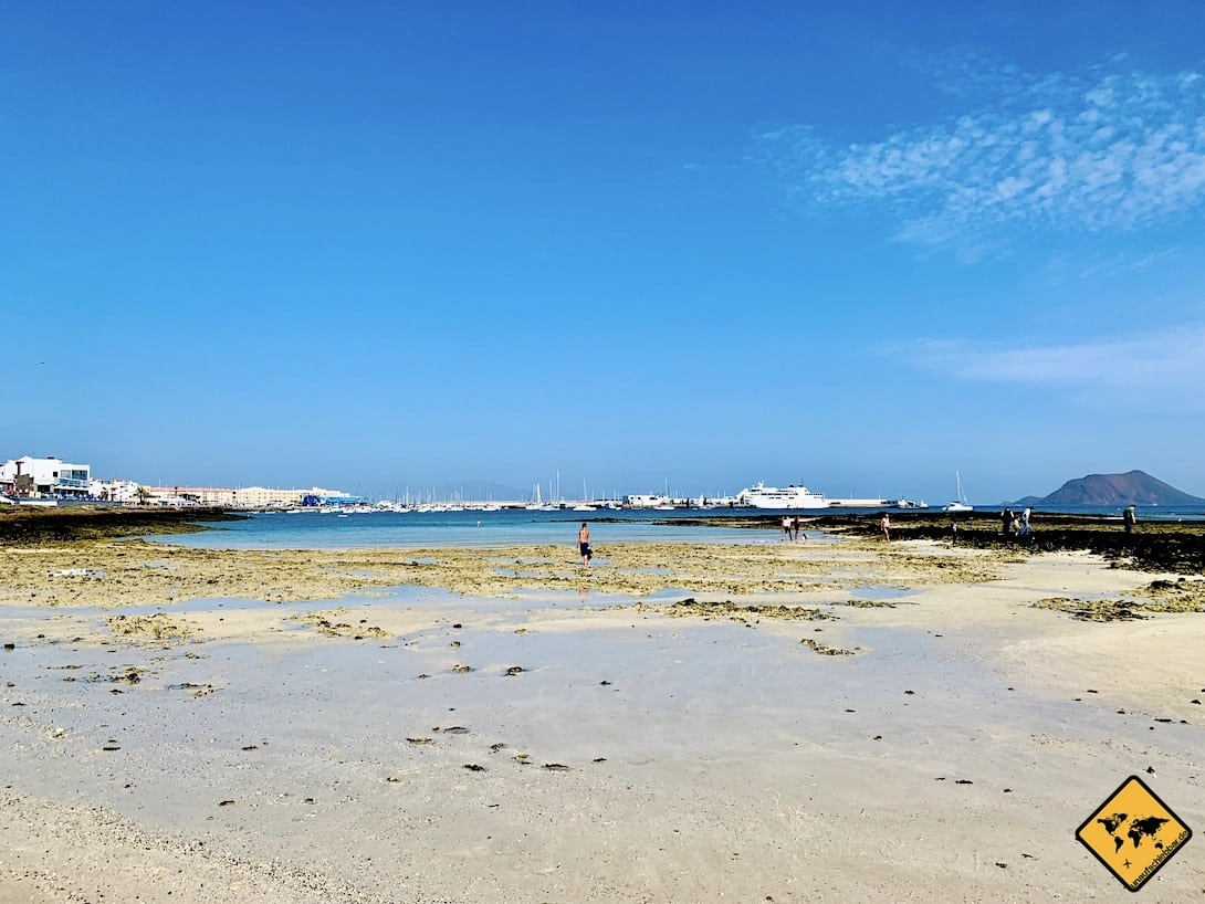 Playa de Corralejo Viejo Ebbe