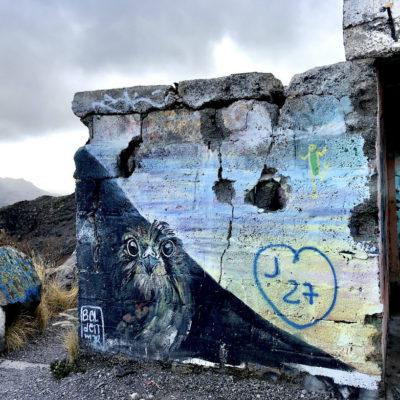 Besonders gut hat uns das Eulen Graffiti am Aussichtspunkt des Playa de las Teresitas gefallen