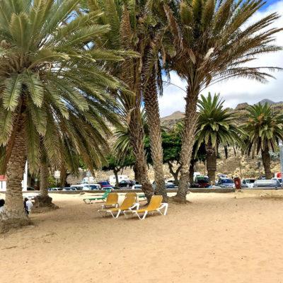 Die zahlreichen Palmen am Playa de las Teresitas spenden Schatten