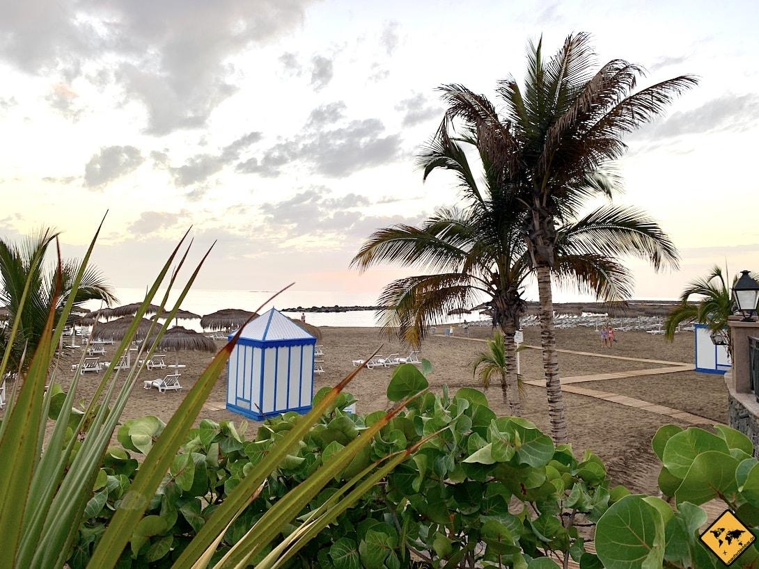 Playa del Duque Strand Palmen