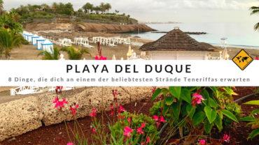 Diese 8 Highlights warten am Playa del Duque auf dich
