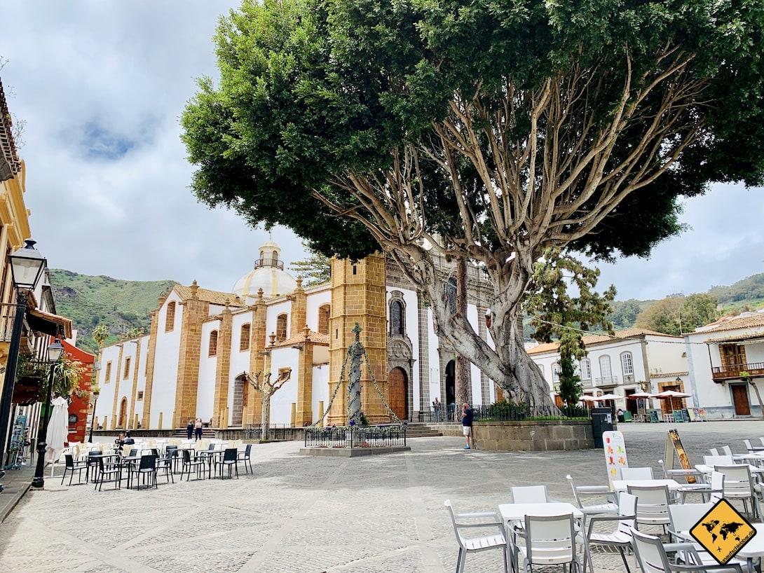 Plaza del Pino Kirche Baum Marktplatz