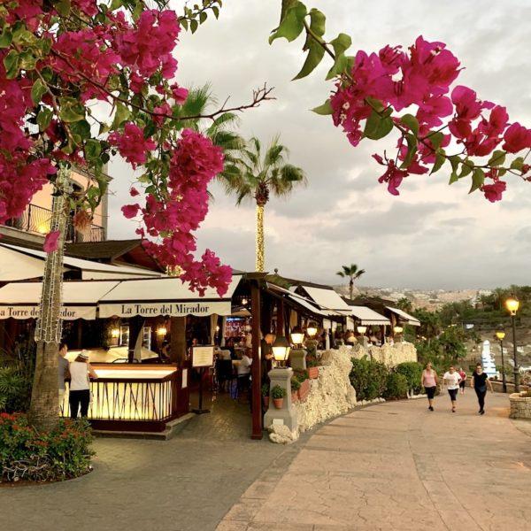 Promenade Blumen Costa Adeje Teneriffa