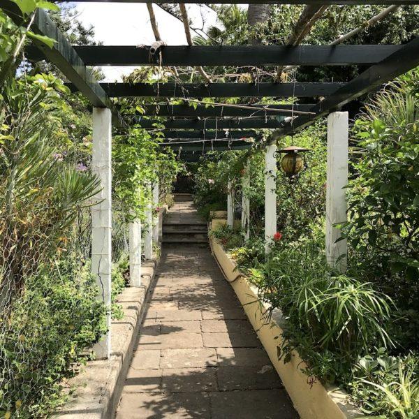 Puerto de la Cruz Teneriffa Sitio Litre Garten