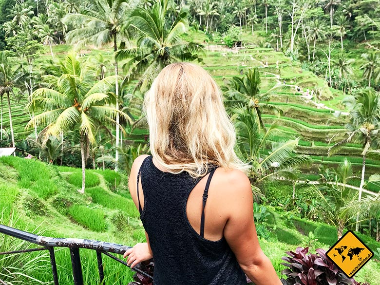 Reisetipps Bali Reisfeld Trekking Tagalalang