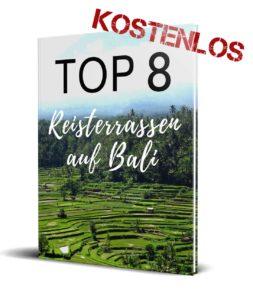 Bali Reisterrassen Guide