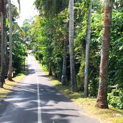 Die meisten Straßen auf Bali sind vor allem in weniger touristischen Regionen eher schmaler als in Deutschland