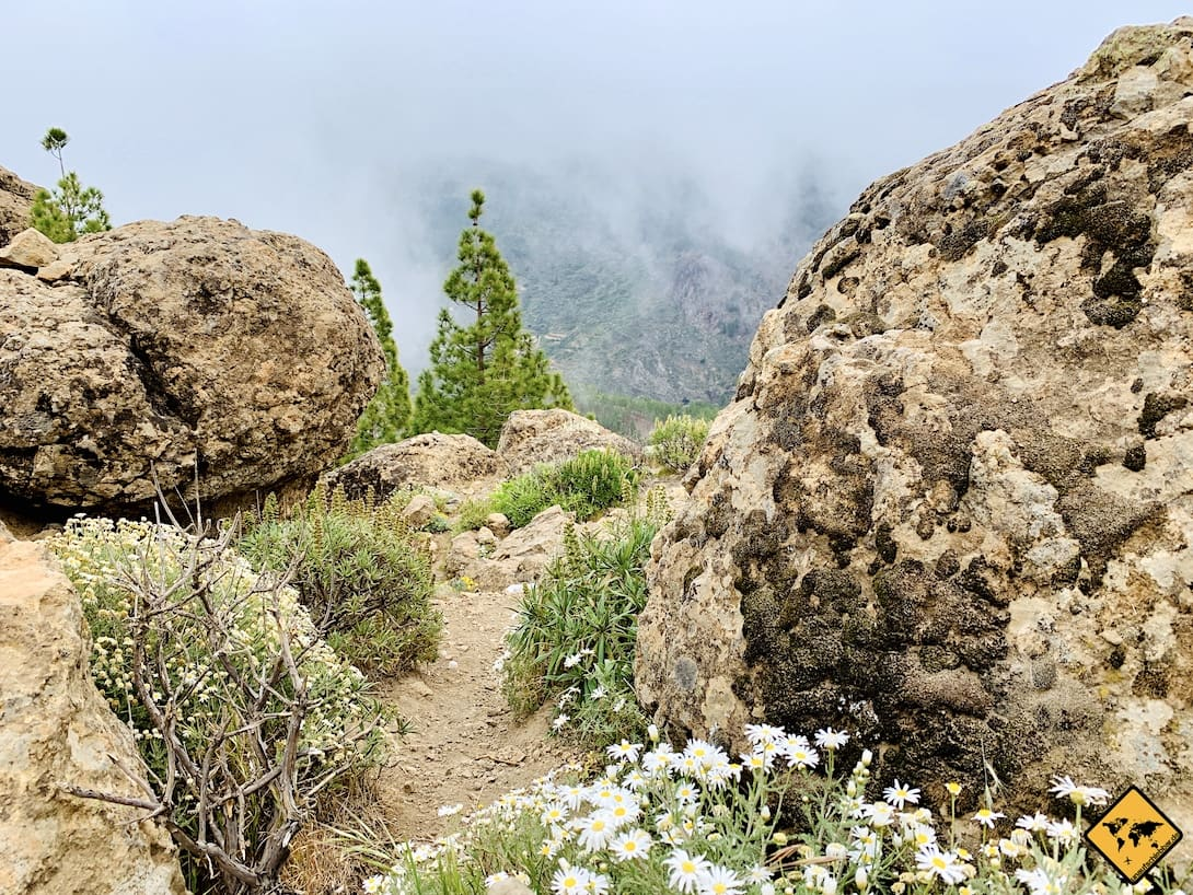 Roque Nublo Wetter beste Besuchszeit