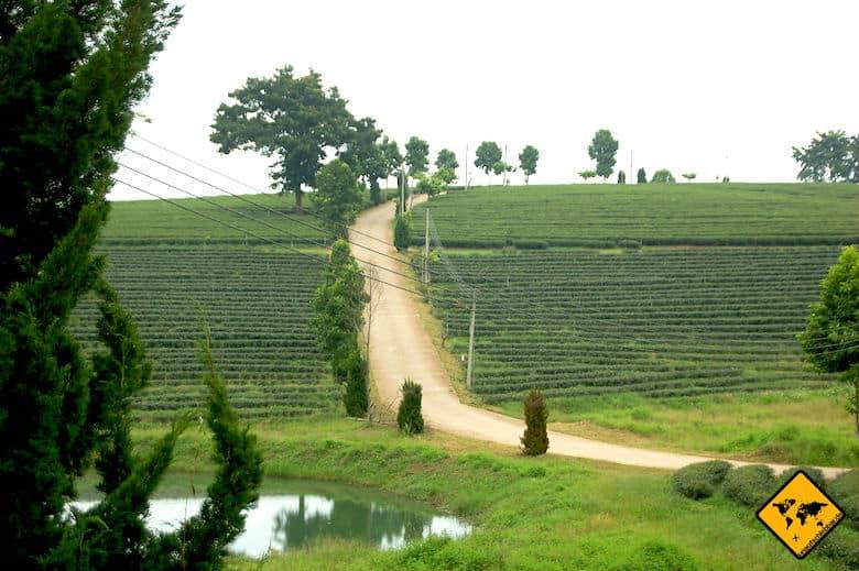 Rundreise Nordthailand
