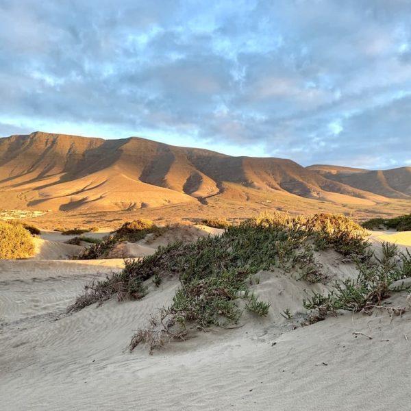 Sanddünen Caleta de Famara Lanzarote