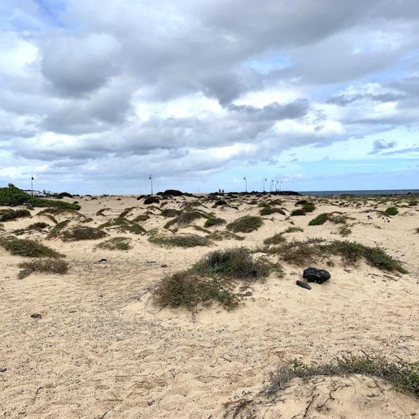 Sanddünen Costa Teguise Lanzarote