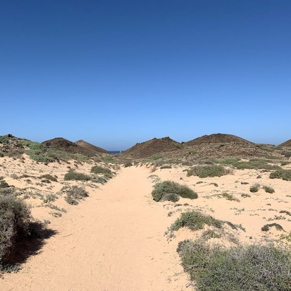 Sandweg Isla de Lobos