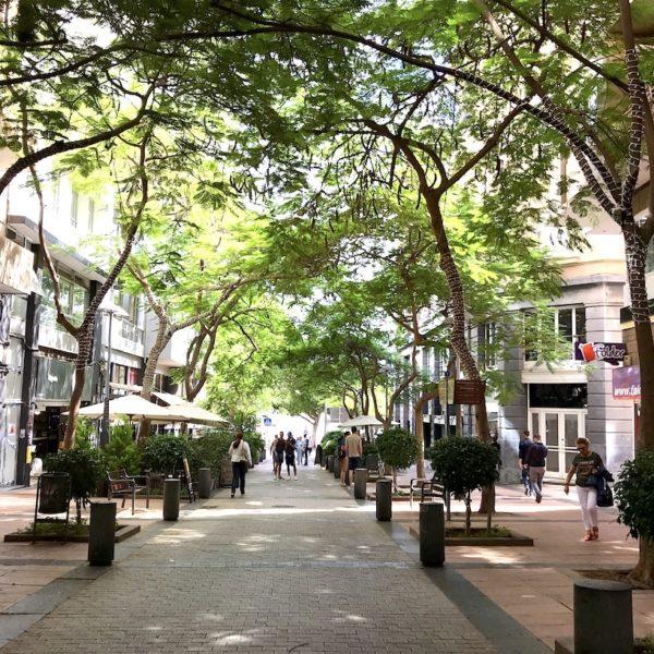 Santa Cruz de Tenerife Altstadt Fußgängerzone