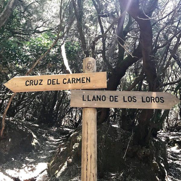 Schild Wanderweg Teneriffa Anaga Gebirge
