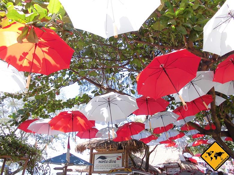 Schirme Gili T