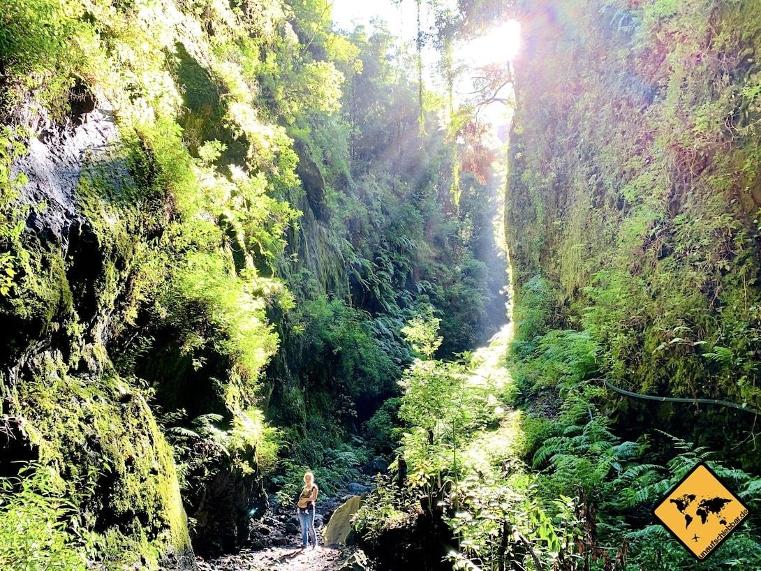 Schlucht Barranco del Agua La Palma