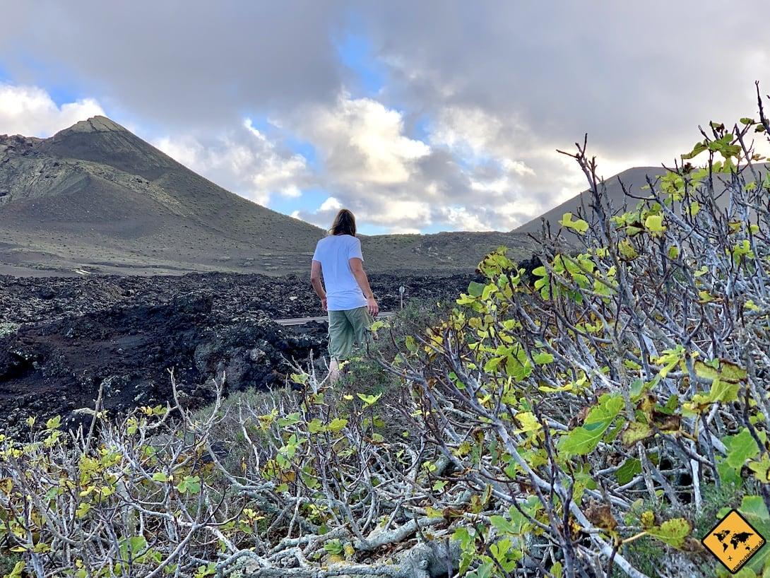 Auf Lanzarote erwarten dich vor allem viele ausgefallene Natur-Highlights