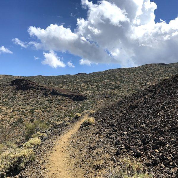 Sendero 14 Teide Nationalpark Teneriffa wandern