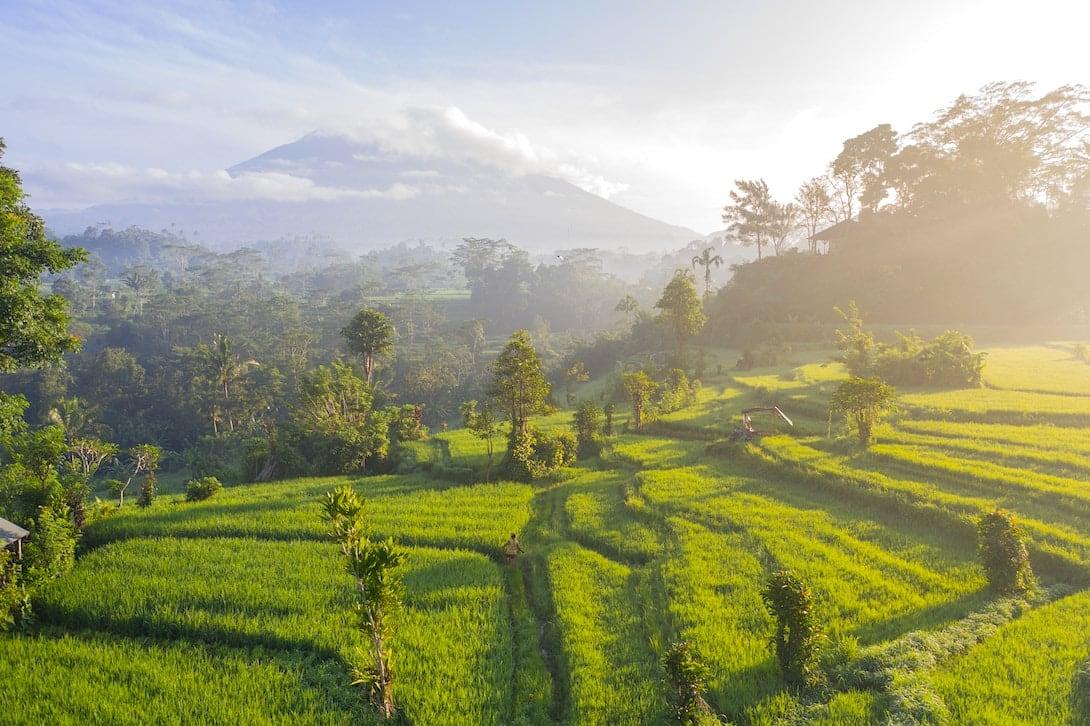 Sidemen Reisterrassen Gunung Agung Bali