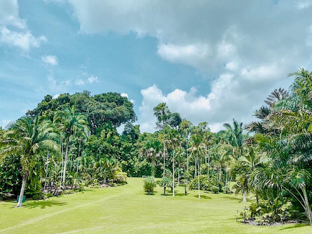 Singapur Highlights Botanischer Garten