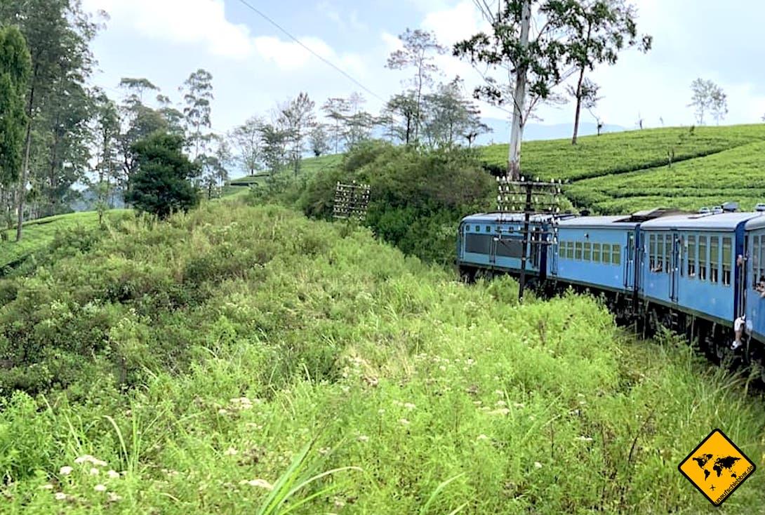 Hier siehst du einen öffentlichen Bus, der in Sri Lanka das wohl üblichste Fortbewegungsmittel ist