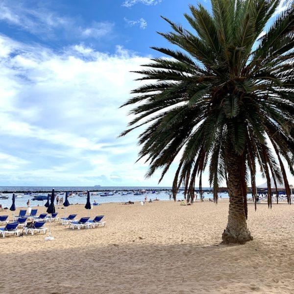 Strände auf Teneriffa Teresitas Palme Sand