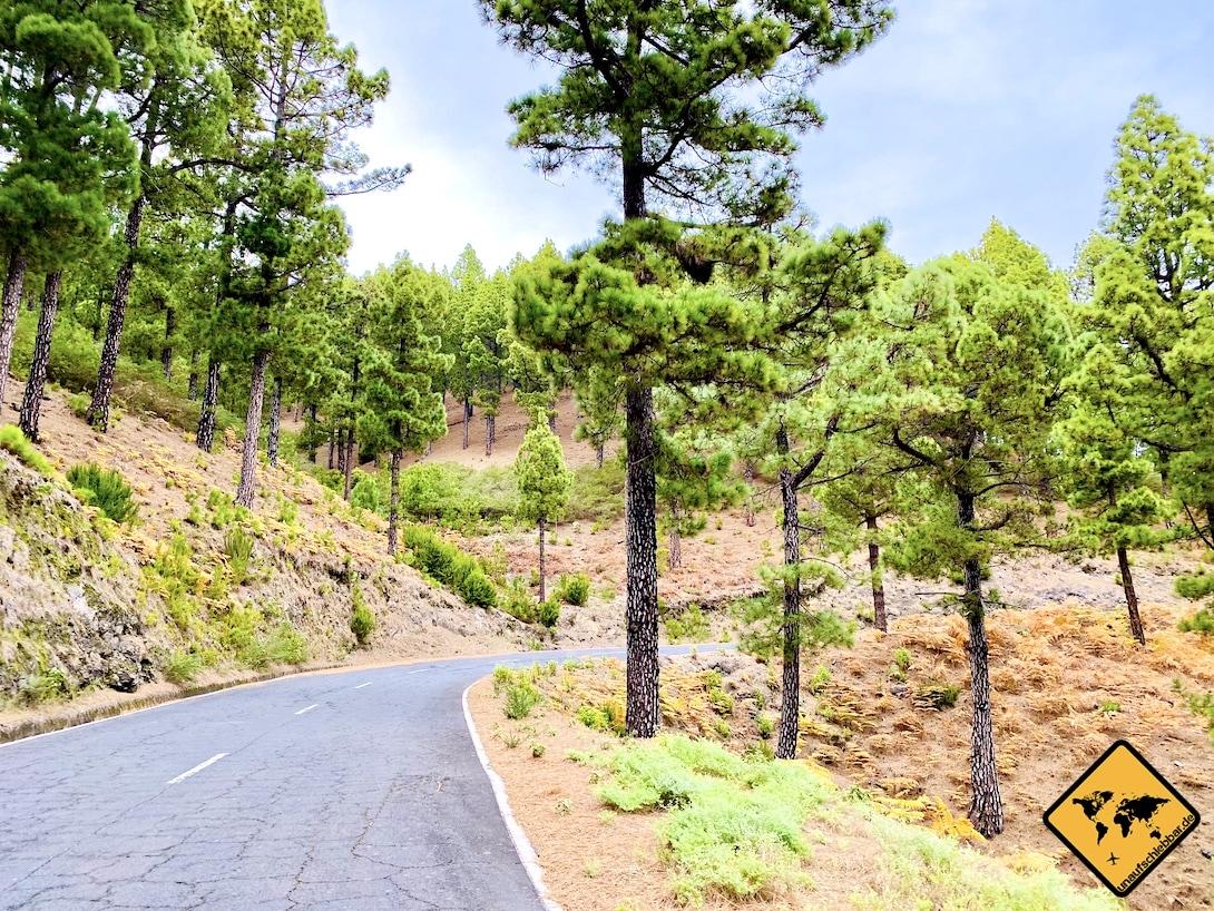 Straße LP-4 La Palma