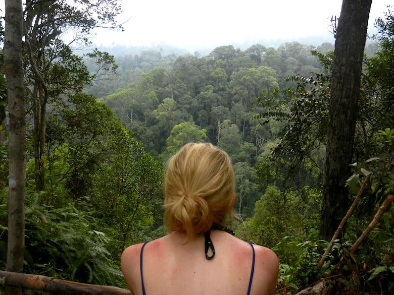 Sumatra Trekking Dschungel