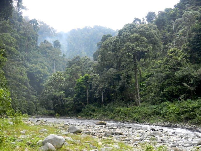 Sumatra Trekking Raftingfluss