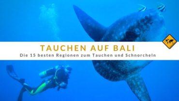 Tauchen auf Bali – Die 15 besten Regionen zum Tauchen und Schnorcheln: Tipps einer deutschen Tauchschule