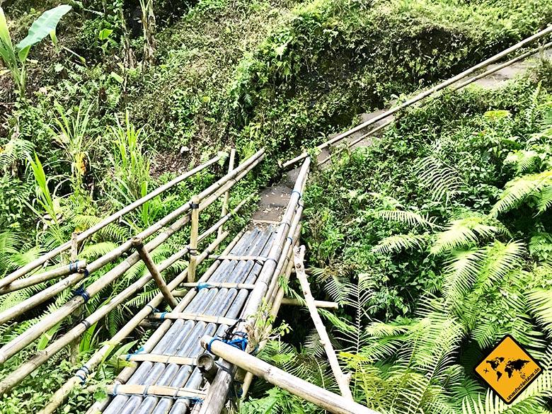 Tegalalang Reisterrassen Brücke