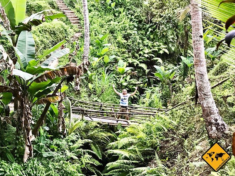 Tegalalang Rice Terrace Natur