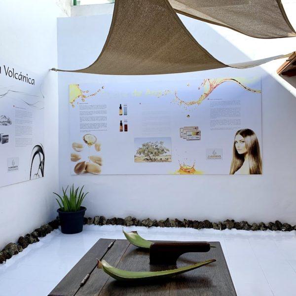 Teguise Aloe Vera Museum