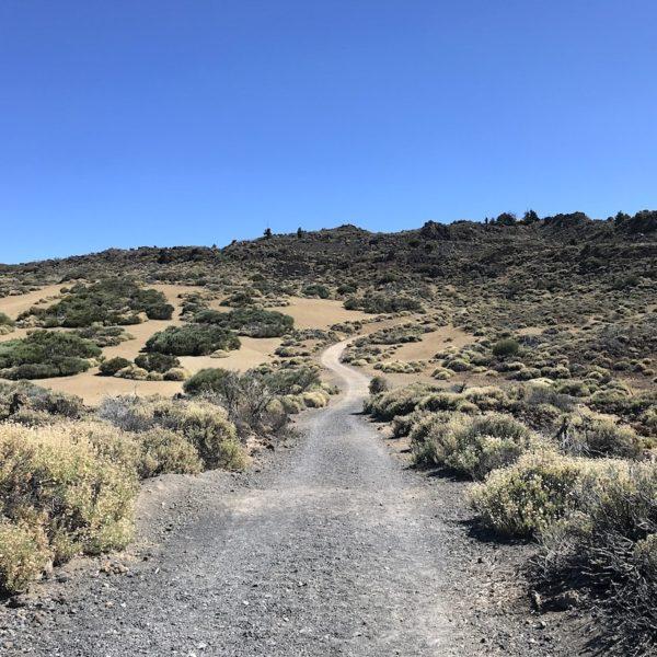 Teide Wanderung Weg