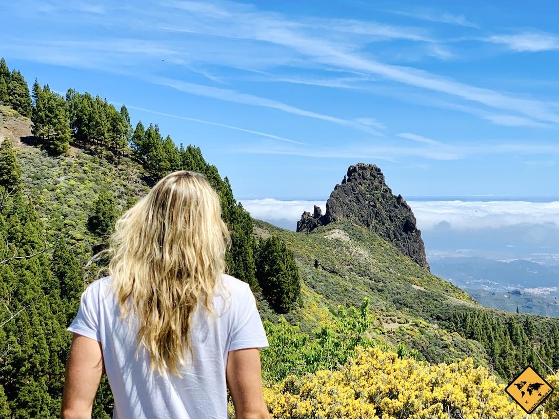Teneriffa oder Gran Canaria Berge Frühling