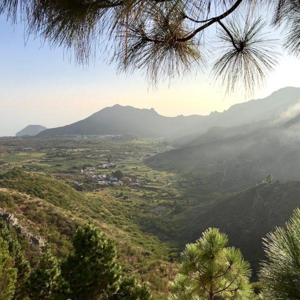 Auf der Wanderung in El Tanque erwarten dich schöne Aussichten ins Grüne