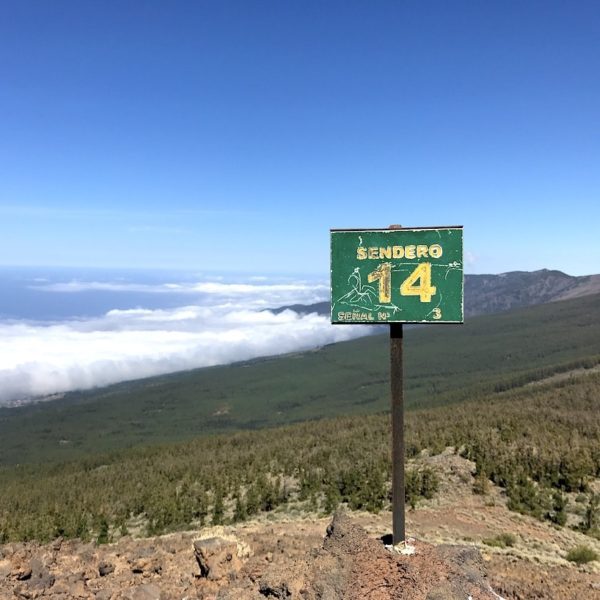 Teneriffa wandern Sendero 14 Teide Nationalpark