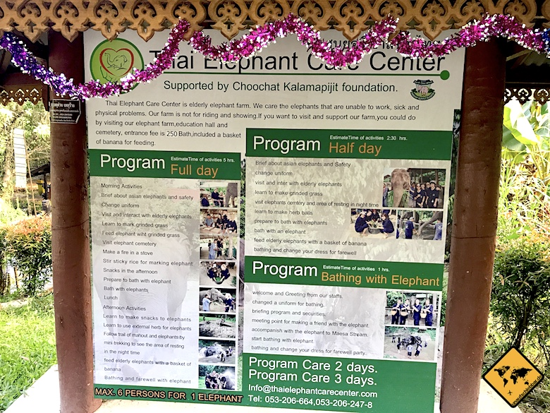 Thai Elephant Care Center Chiang Mai Programm