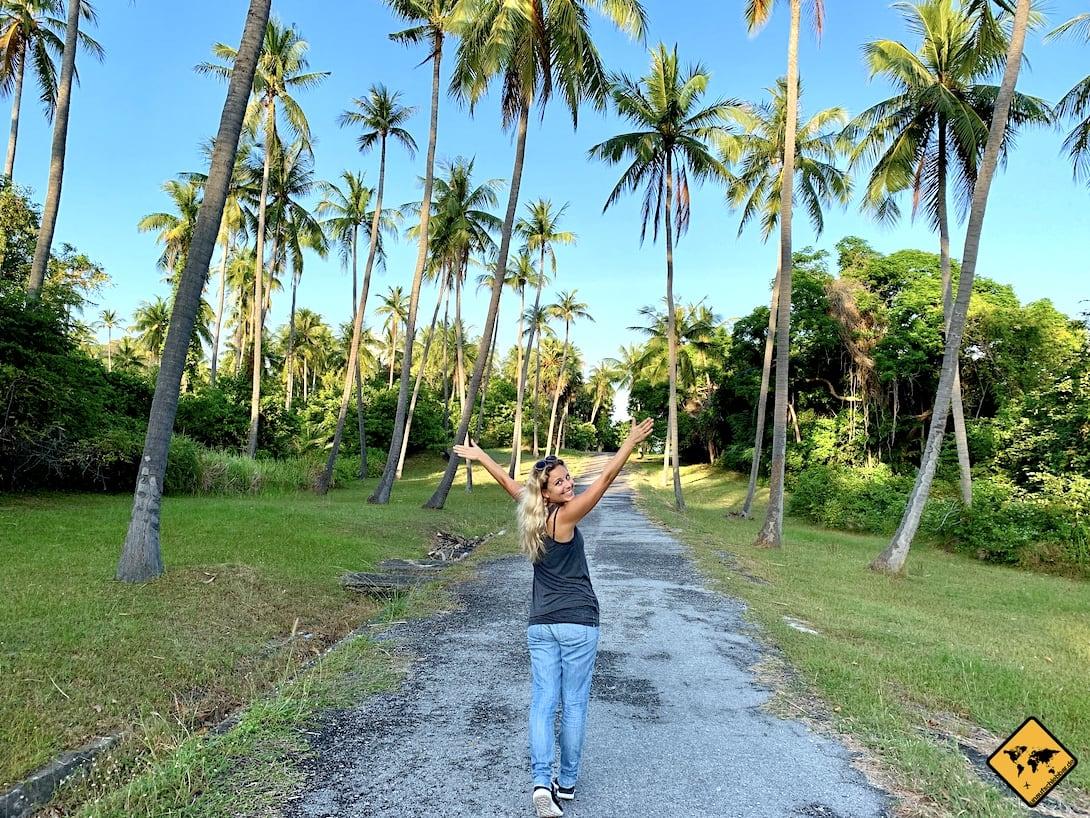 Thailand Palmen schwanger reisen