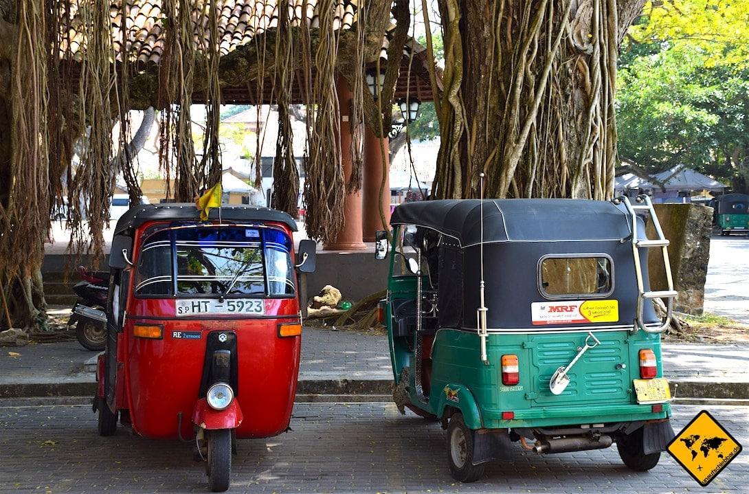 Tuk Tuk Transportmittel Negombo