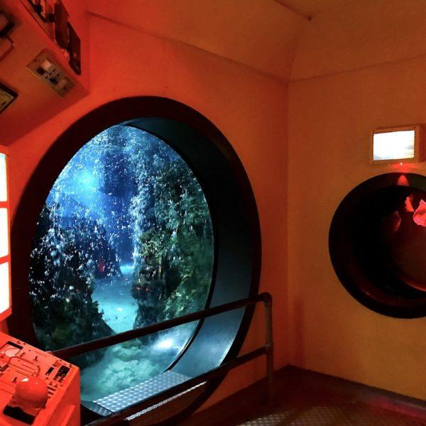 U-Boot Aquarium Oberhausen