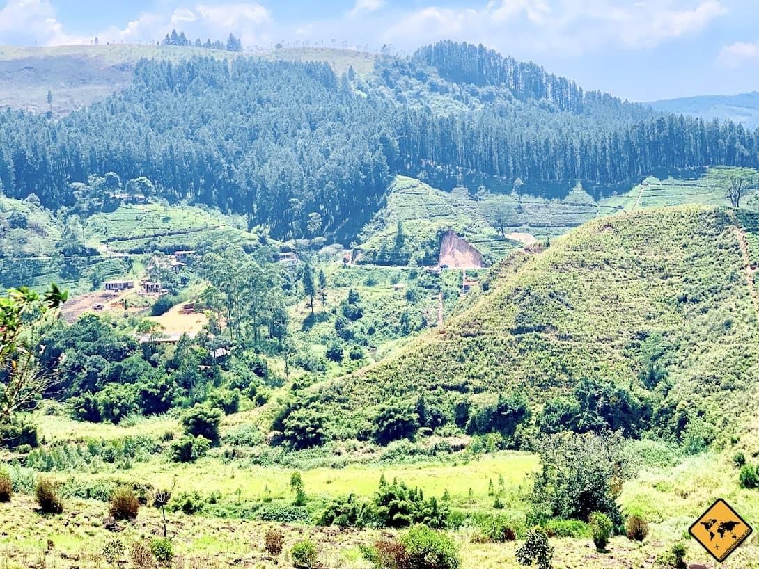 Von Kandy nach Ella Zugfahrt Landschaft
