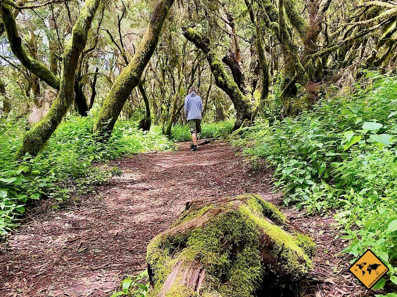 Wandern El Hierro La Llanía kanarische Inseln